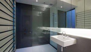 Showerscreen2